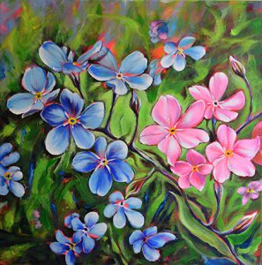 forget-me-nots-full