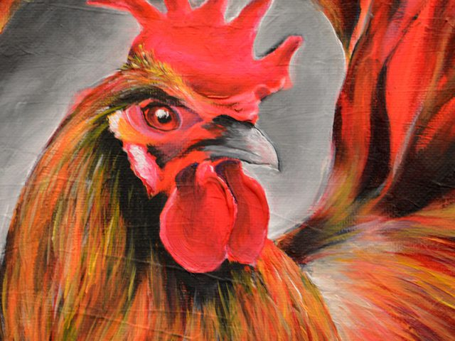 Red Rooster - Dimitrie Ross