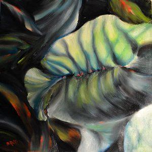 Alokasia Leaf