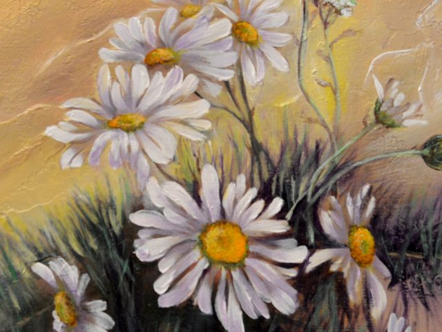 Chamomile – Painting by Dimitrie Ross
